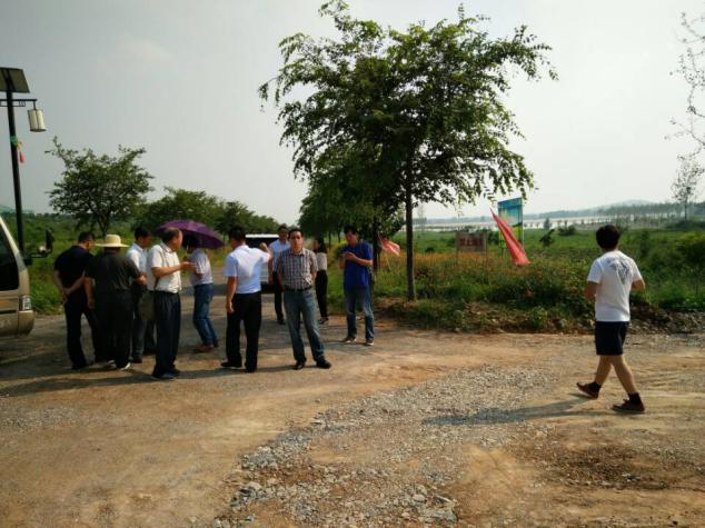 我院《山东临沂迷龙湖休闲农业开发项目旅游总体规划及重点地块修建性